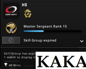 cs go skill group